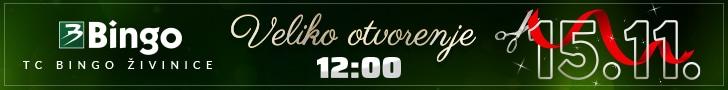 Bingo banner 728×90